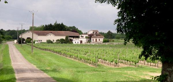 Vines drive