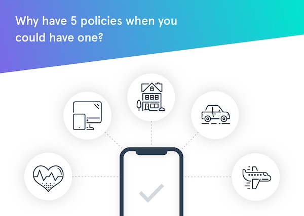 Seedrs 1 one policy