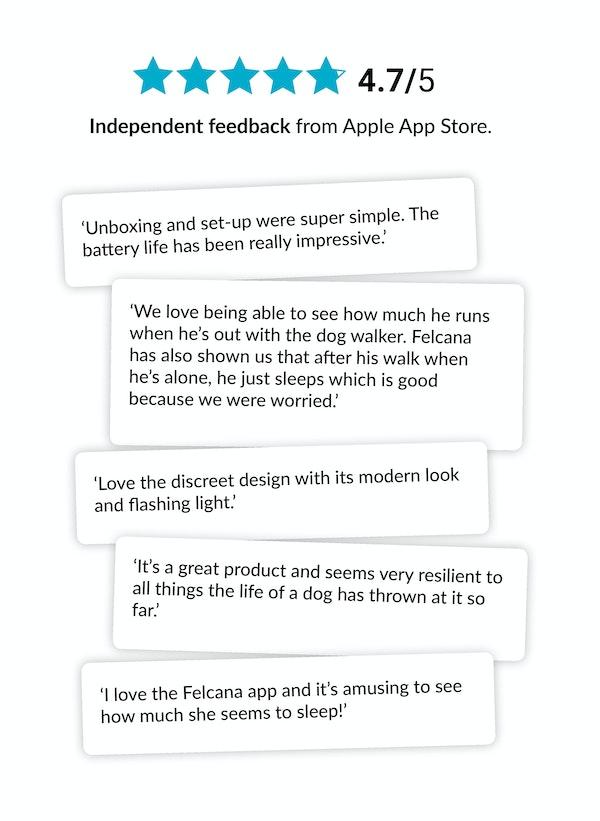 Felcana reviews