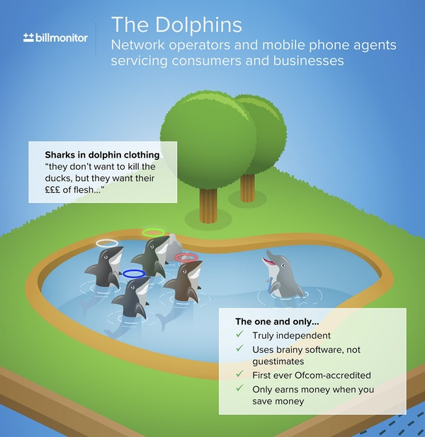 Dolphins pond v2