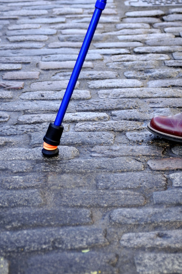 Cobble blue telescopic close up