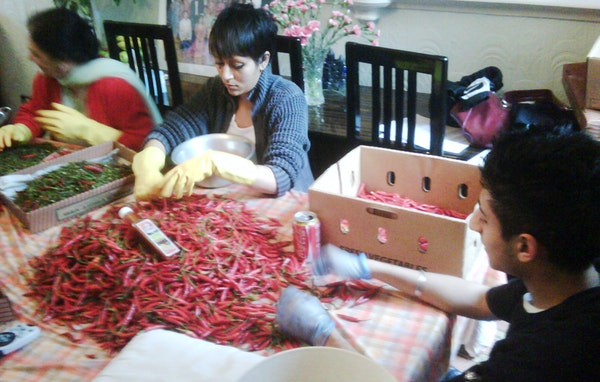 Picking chilli s at the dinner table